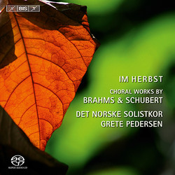 Im Herbst - choral works by Brahms and Schubert